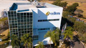 Cellera Farma representará medicamentos da J&J no Brasil