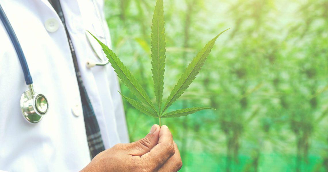 Anvisa aprova uso de produtos à base de Cannabis